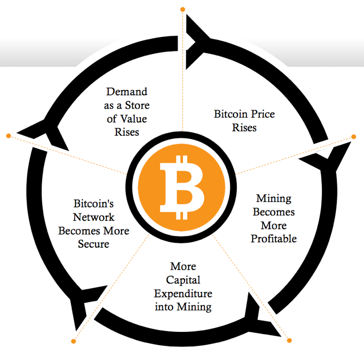 Bitcoin positive feedback loop